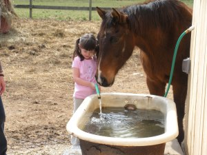 L was filling up their water and Samson was being friendly